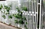 Забор из полипропиленовых труб